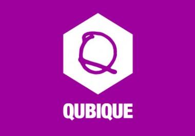 Qubique 2011